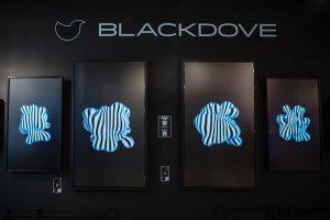 Blackdove digital artwork via cryptocurrency